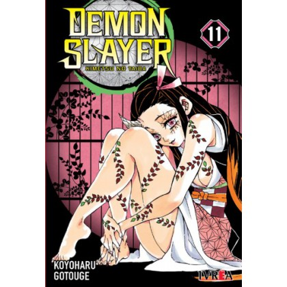 Demon Slayer Kimetsu No Yaiba 11